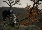 IBIS Mojo HD - Videotest