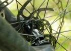 Lapierre Zesty AM - Mullet bike