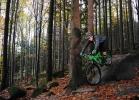 Pivot Cycles - Rychleby 2013