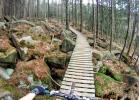 Nájezdový trail Dr. Weissera