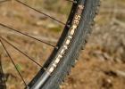 Stevens Monarch Trail - review