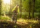Whyte kids/junior trail bikes 2020
