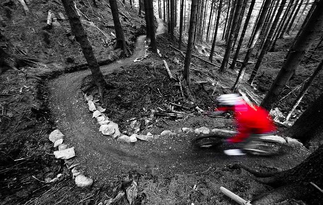 Cyklista si užívá černé stezky na Singltreku pod Smrkem. Foto: Petr Slavík